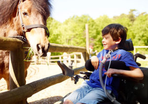 Boy_with_horse_600x400